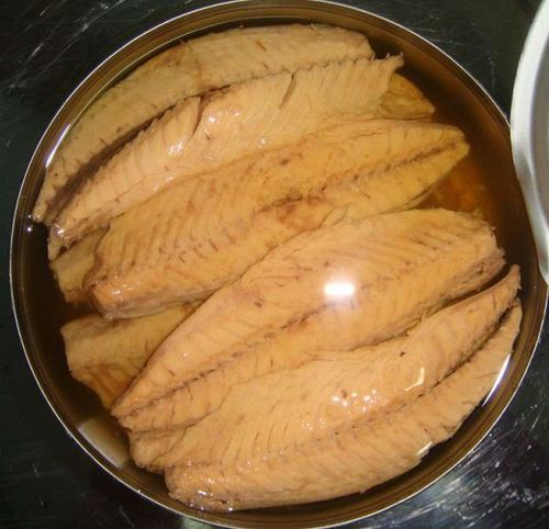 Frozen Blue Shark Fillet or Steak (Prionace glauca)