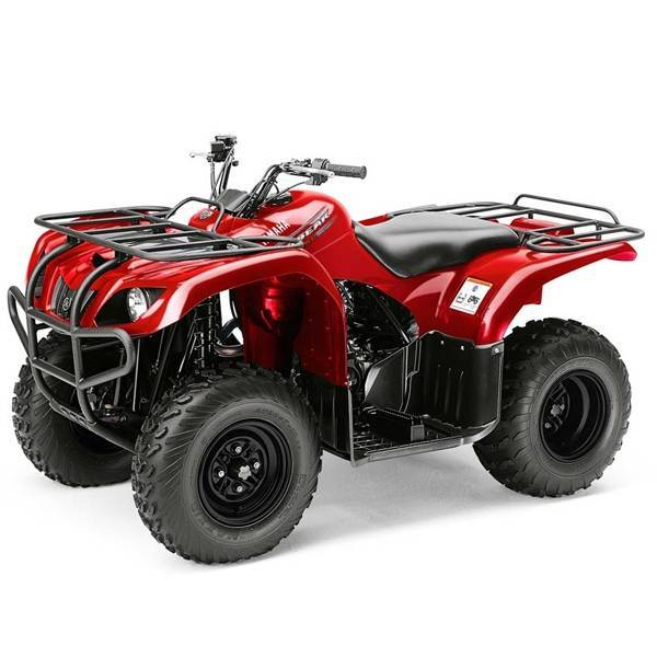 Gizzly 250 2wd