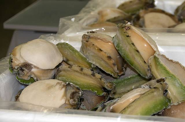 High Quality Dried and Frozen Abalone for sale