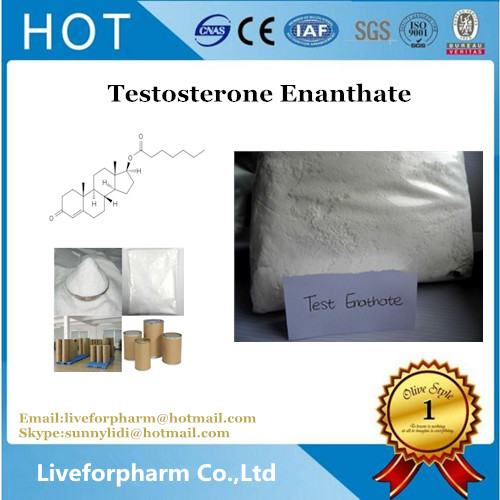 Best quality Testosterone Enanthate Cas315-37-7 raw steroid muscle powder