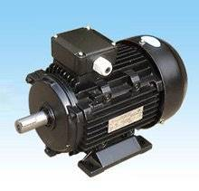 ELECTRIC MOTOR (MS series al body three phase motor