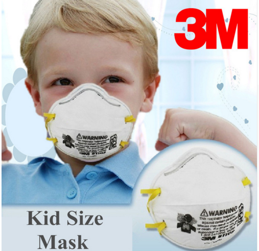 3M 8110S N95 Small Masks