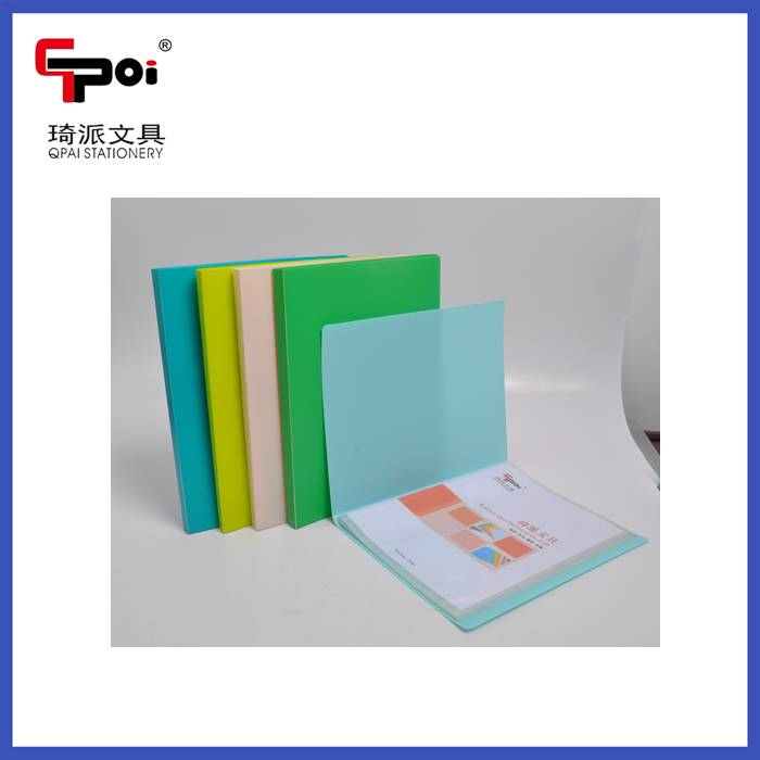 PP Stationery Wholesale A4 PP Clear Folder Display Book