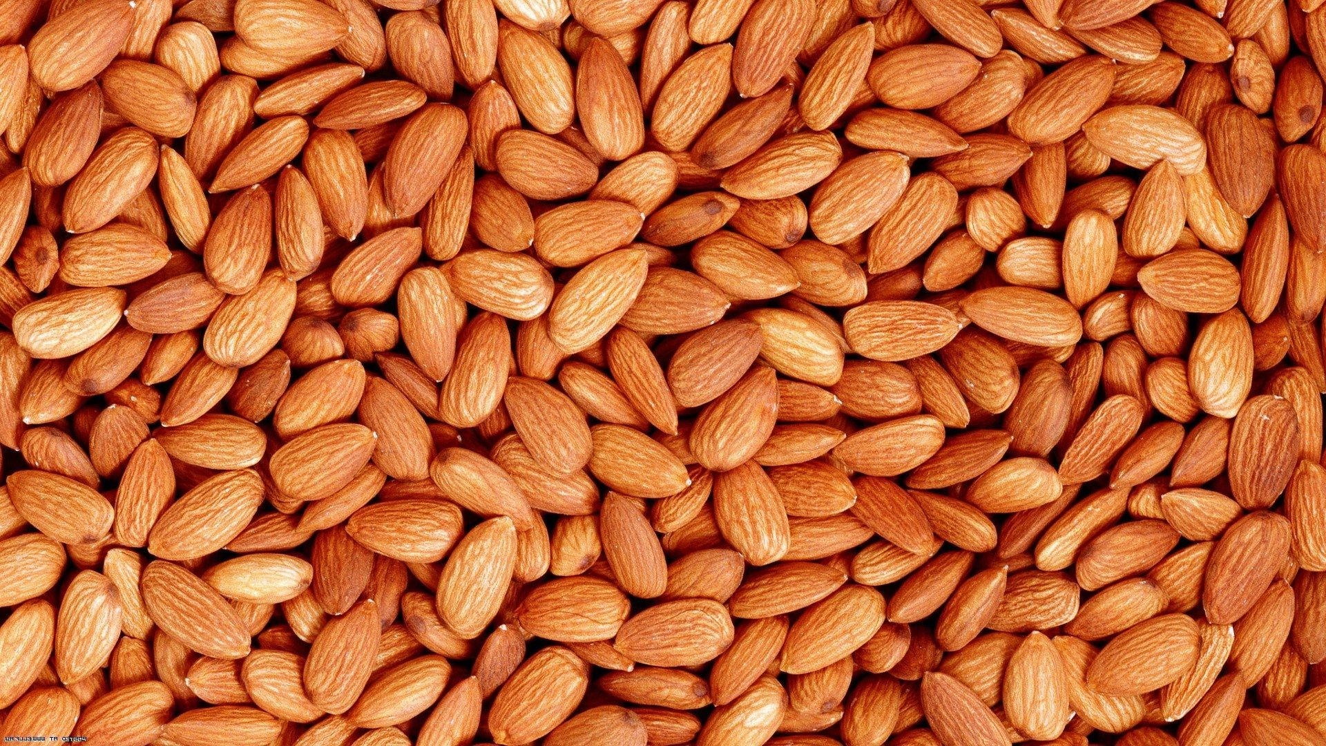 Peanuts, Almond nut, Cashew Nuts