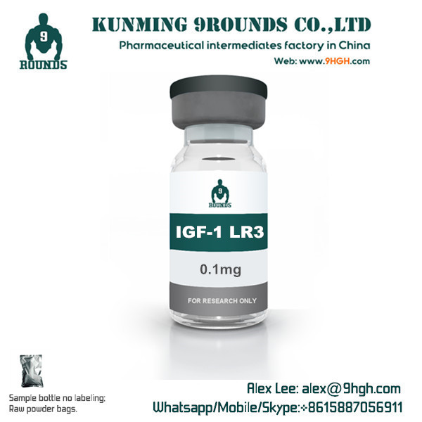0.1MG IGF1 LR3 from China Kunming factory IGF1 L 3