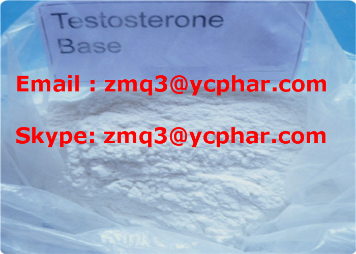 Testosterones Base CAS 58-22-0 Factory Supply Hight Purity 99.5%