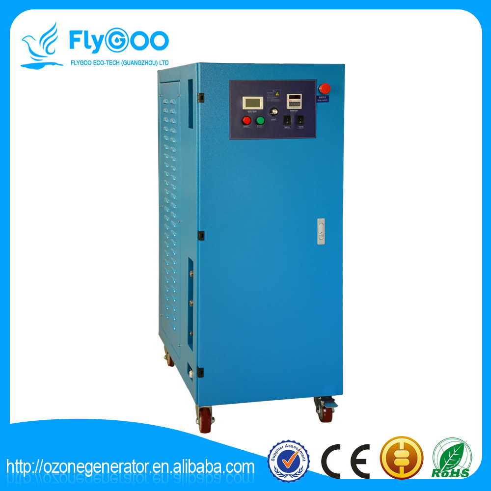 20g Ozonator for Air Purifier/ Ozone Price