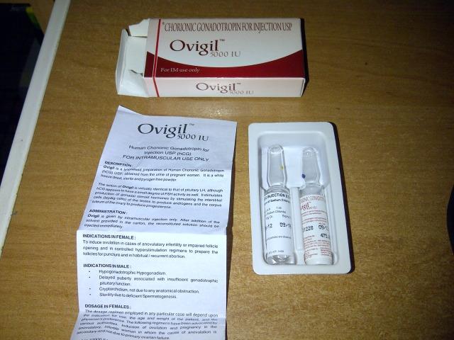 HCG 5000iu - OVIGIL