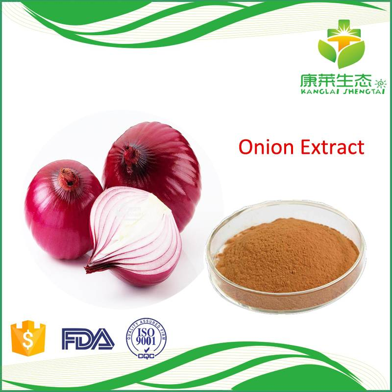 High Quality Onion Extract Powder 10:1
