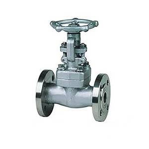 American standard small-bore forged steel power plant gate valve