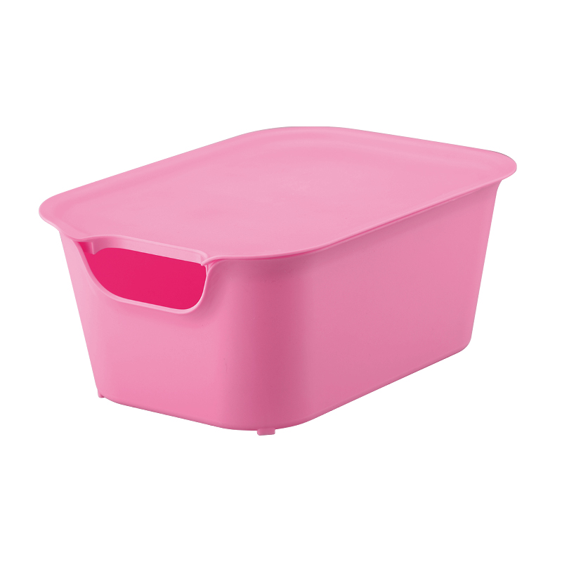 6004 colorful visual storage box /echo-friendly plastic storage box