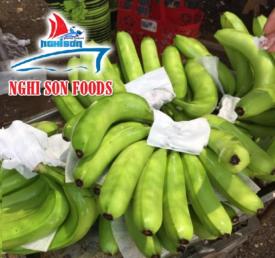 Fresh Cavendish Banana (+84 90 5179759)