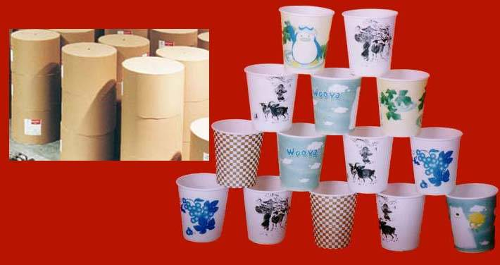 Cup Paper (PE coated)