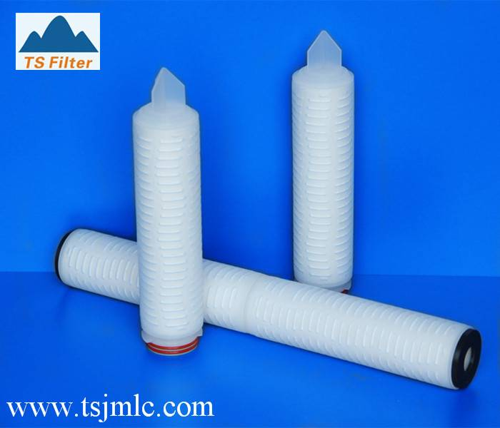 10 Inch Hydrophobic PTFE Membrane 0.2 Micron Cartridge Filter For Steriling Air