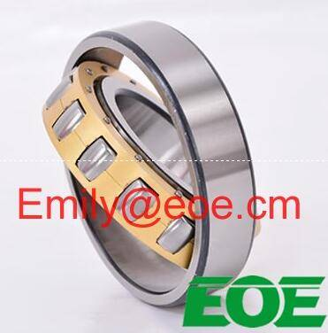 Bearings for Oil&Driiling NUP 6/558.8 Q4 EOE Brand