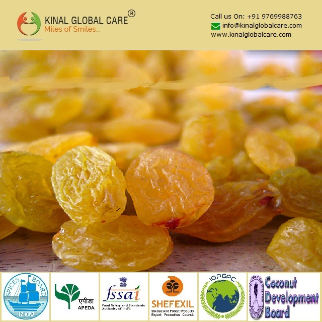 Best Quality Indian Golden Raisins