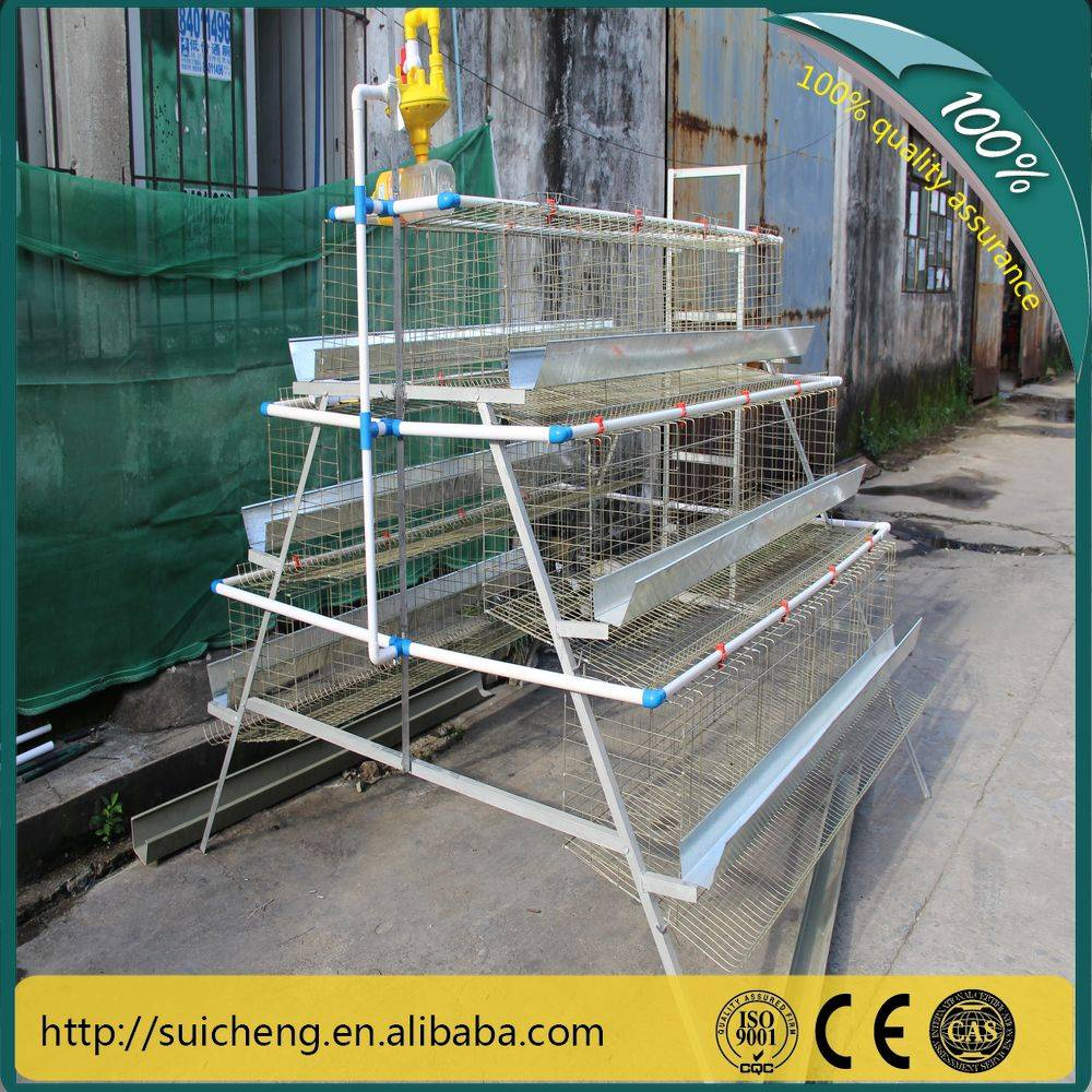 Guangzhou Chicken Cages/ Chicken Layer Cage/ Poultry Farm Chicken Cage