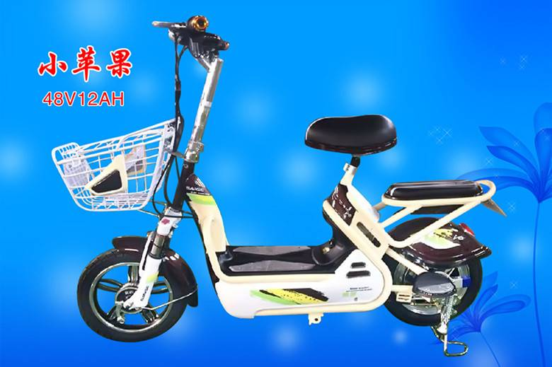 Electric Bicycle (OKS-XPG)