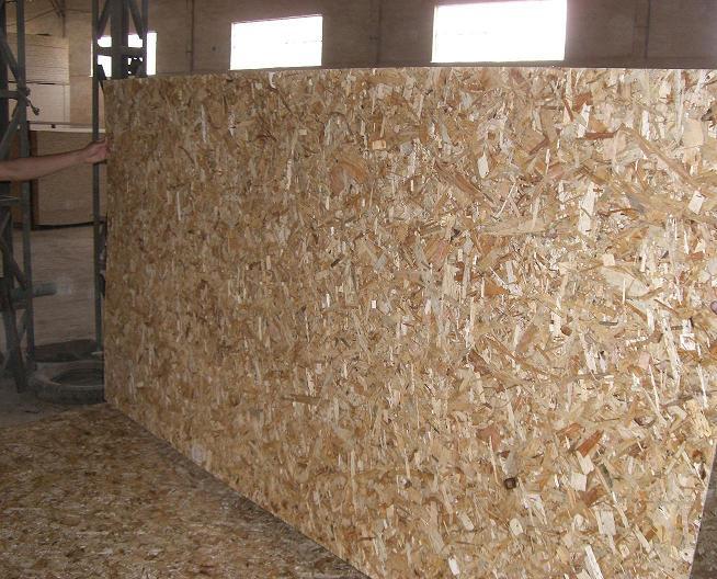 osb timber