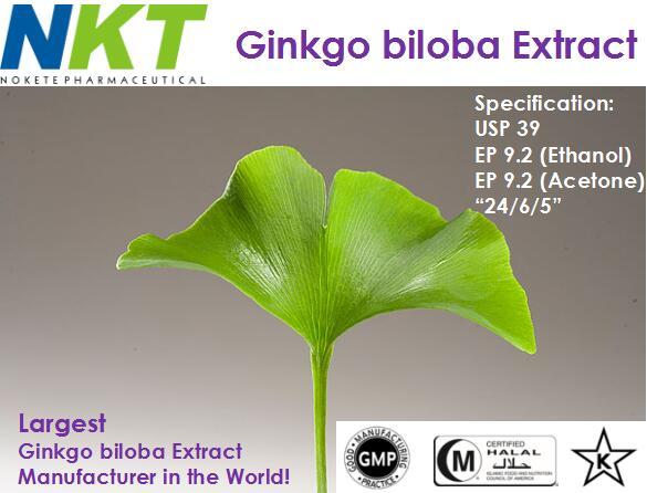 Ginkgo biloba Extract (GMP Certified)