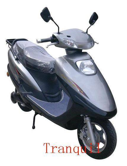Electric Motorcycle(AG-EM02)(500W)