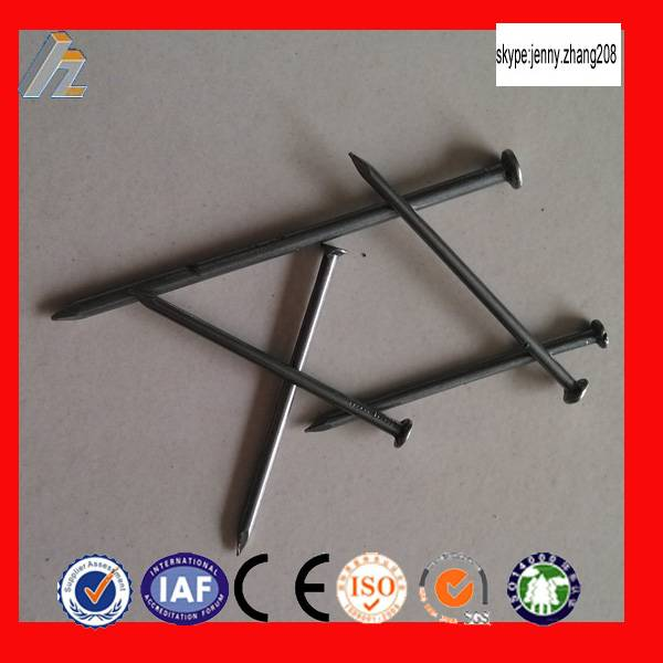 galvanized or polished common iron nails(factory)