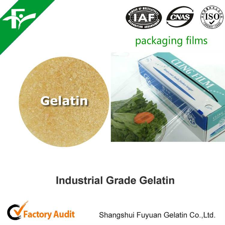 high quality Industrial gelatin for paper making / packaging films