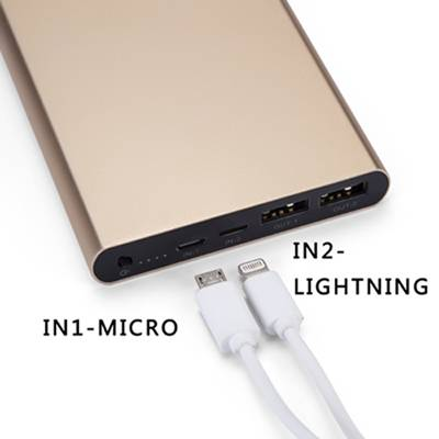 Newest 12000mAh Slim Power Bank With Dual INPUT&Dual OUTPUT